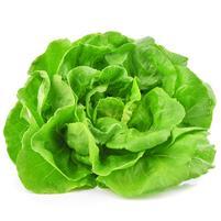 Image Salade