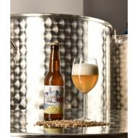 Image DIogilo Fontaine - Pale Ale - Blonde - 33cl